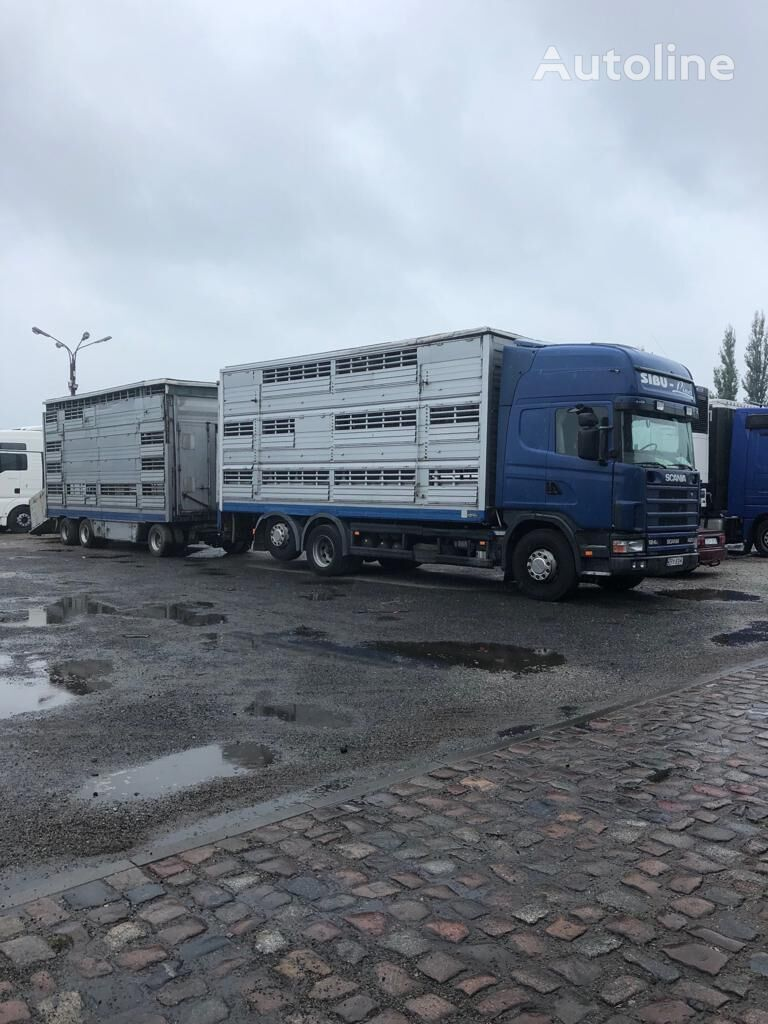 loomaveok veoauto SCANIA 124-420 + loomaveohaagis
